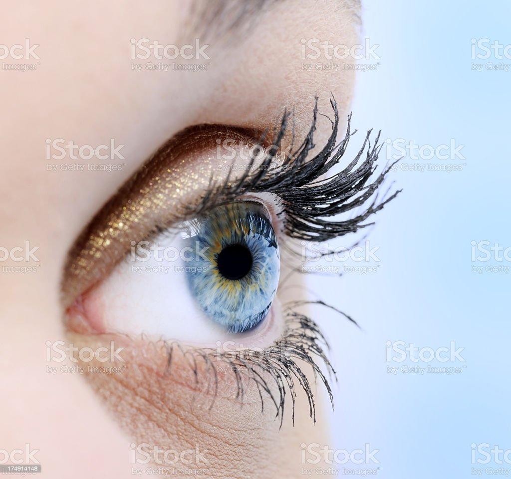 eye macro royalty-free stock photo