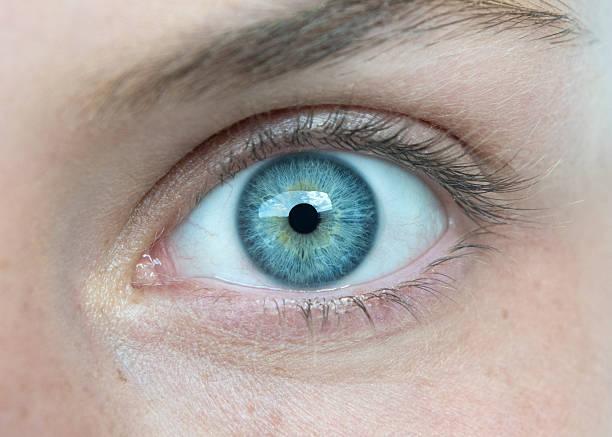 macro de olho - olhos azuis - fotografias e filmes do acervo