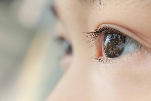 目の子供 - 人間の眼 ストックフォトと画像
