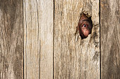 istock Eye of vampire in wooden hole 485065958