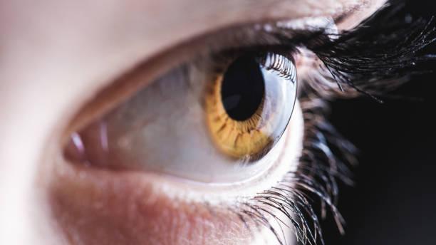 eye - percezione sensoriale foto e immagini stock