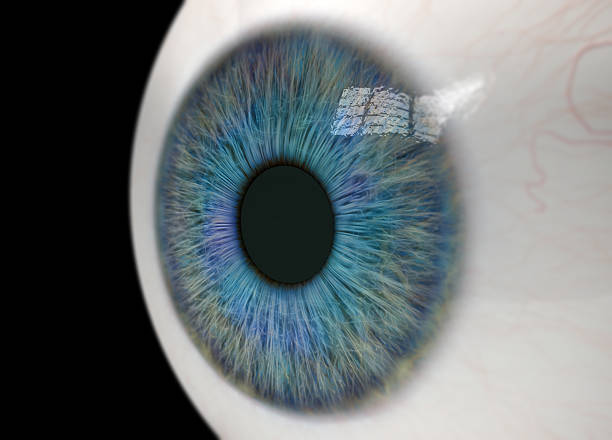 Eyeball Close Up stock photo