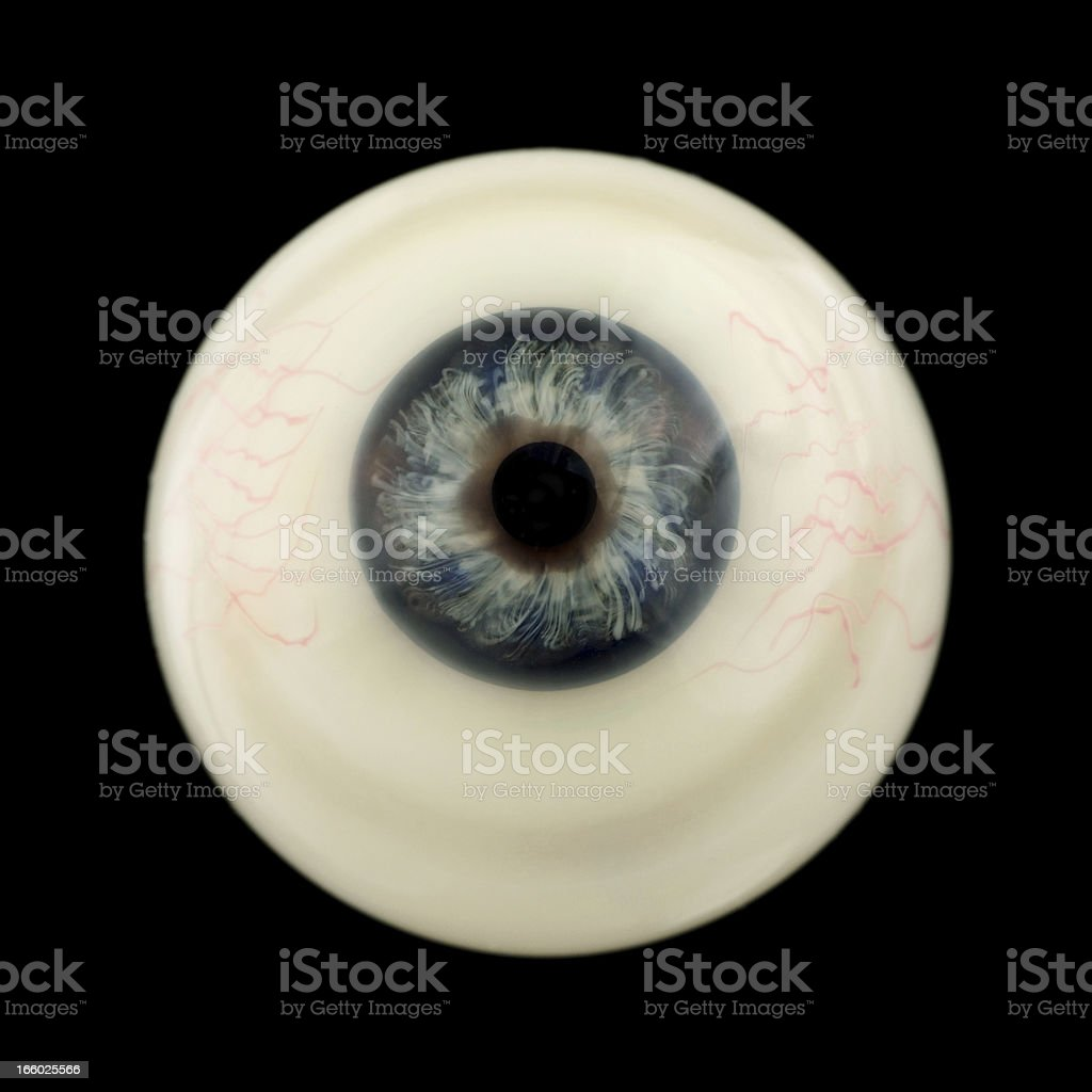 Eyeball. stock photo