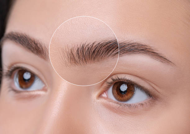 Eyebrows of a young teenager girl after plucking and cutting close-up. The make-up artist will do permanent eyebrow makeup. Makeup and cosmetology concept, eyebrow shape modeling. stock photo