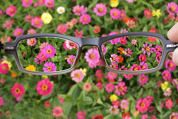 Eyeglasses Clearer Vision Eyeglasses Clearer Vision caenorhabditis elegans stock pictures, royalty-free photos & images