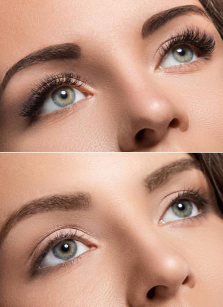 wimper verlenging en wenkbrauwcorrectie - hair grow cyclus stockfoto's en -beelden