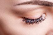 まつげの拡張手順。長いまつげと目の女性。まつげは、クローズ アップ、マクロ、選択と集中