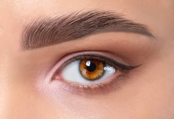 Eyes and eyebrows close up. Portrait of a beautiful teenage girl with beautiful makeup and healthy clean skin. Makeup and cosmetology concept. stock photo