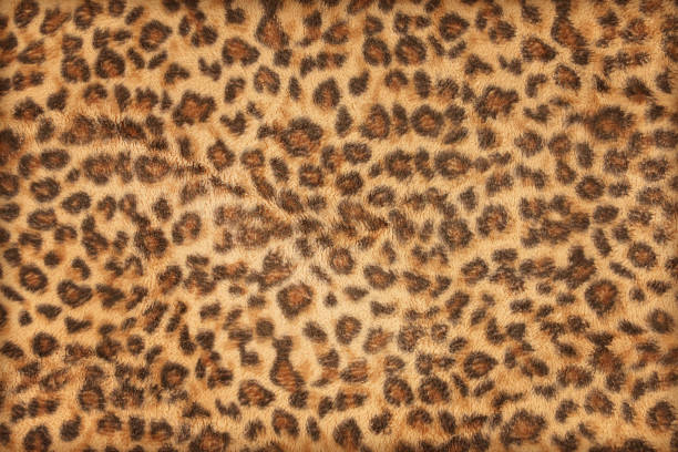 Cтоковое фото fabric pattern leopard pattern for background and texture