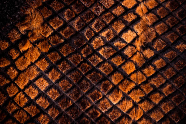 fabric texture with geometrical elements stock photo