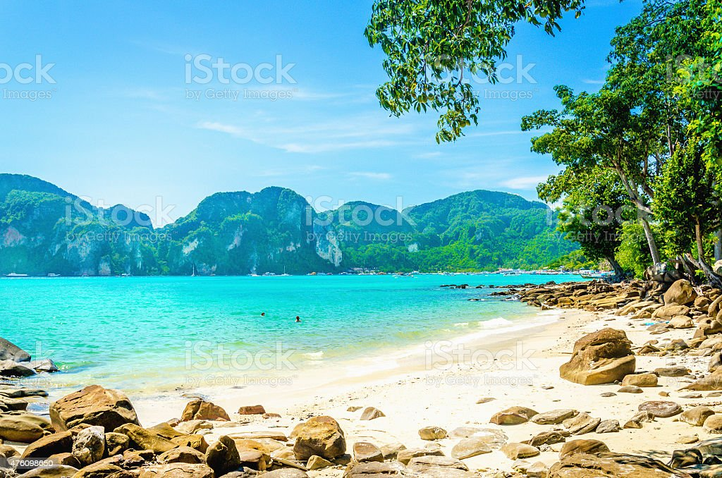 Fabulous beach with exotic plants and white sand stock photo