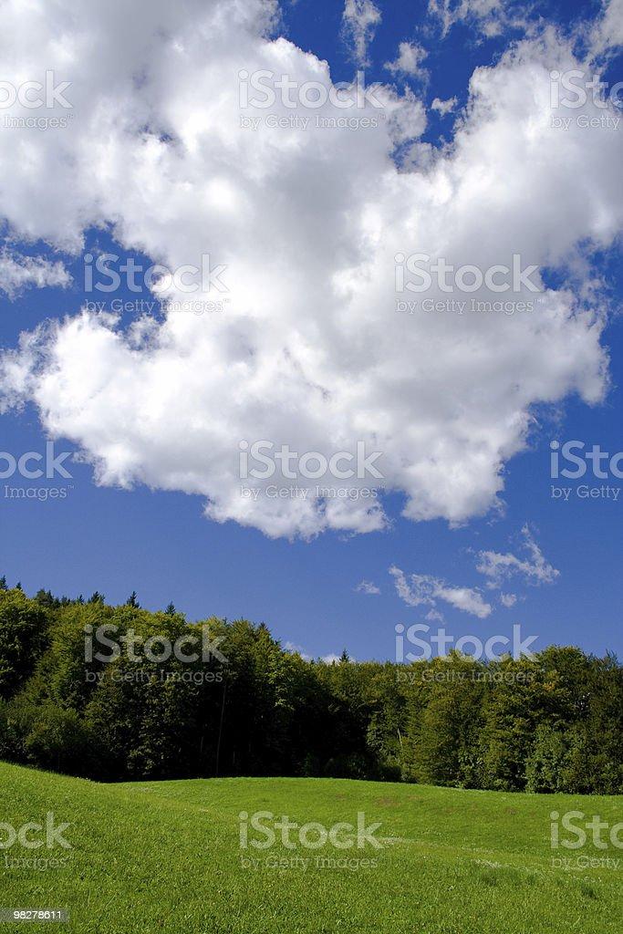 Fabulous nature royalty-free stock photo