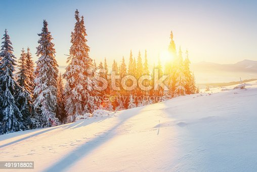 istock Fabulous winter landscape in the mountains 491918802