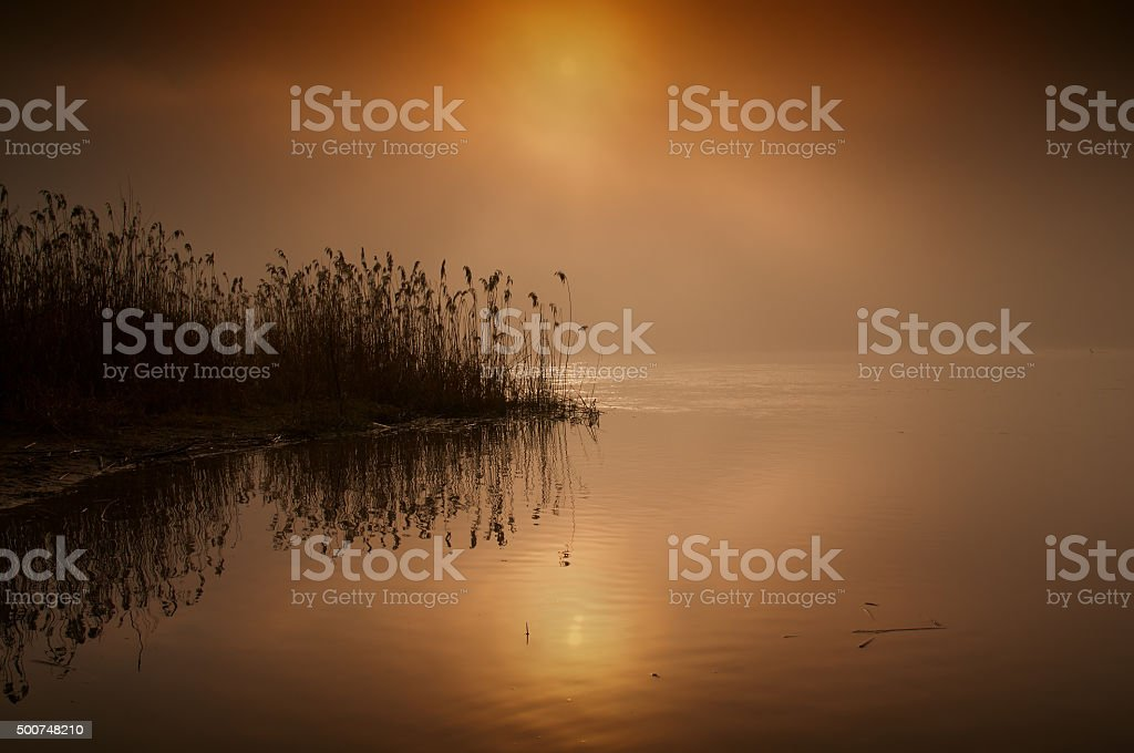 Fabulous,foggy,red  sunrise over the river in summer.Horizontal. stock photo