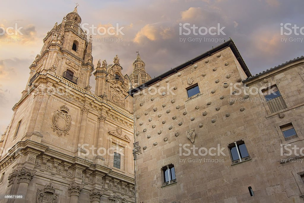 facade  famous home of the shells  Salamanca, Spain stock photo