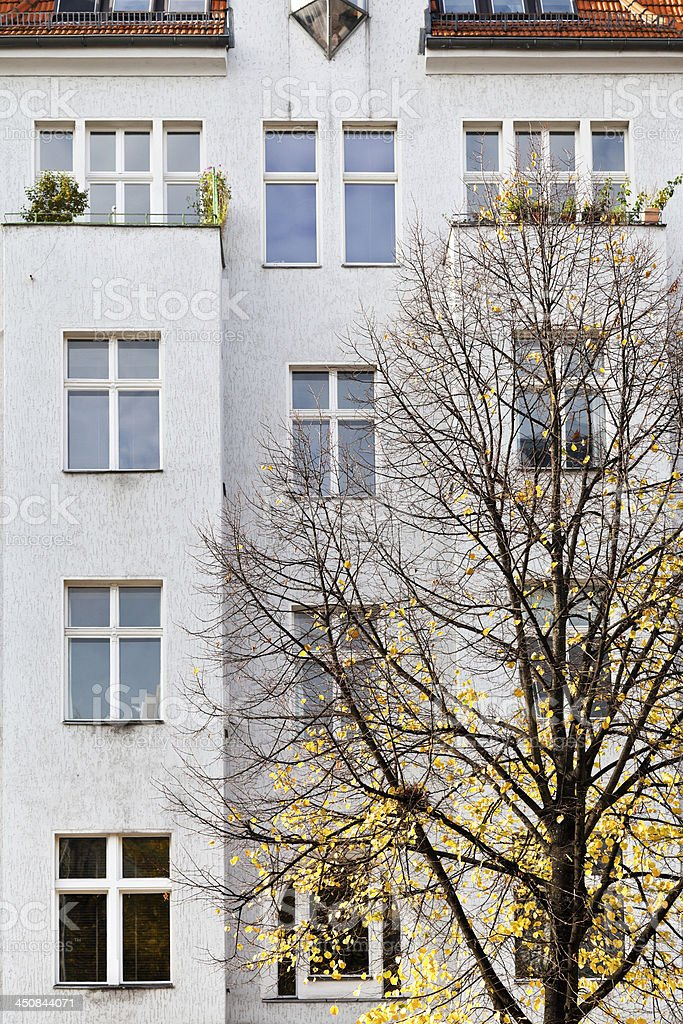 facade of apartment building and yellow linden royalty-free stock photo