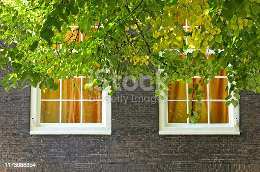 Front view of facade exterior made of brown brick in a sunny day. Close up of two white windows with amber curtains and colorful leaves in front