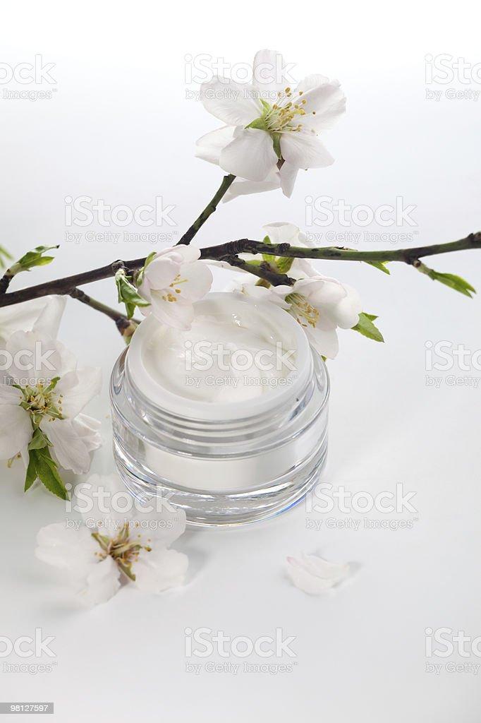 Crema per il viso e fiori di mandorlo foto stock royalty-free