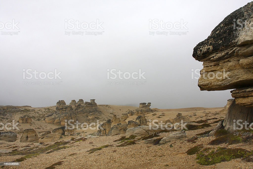 Face in stone royalty-free stock photo