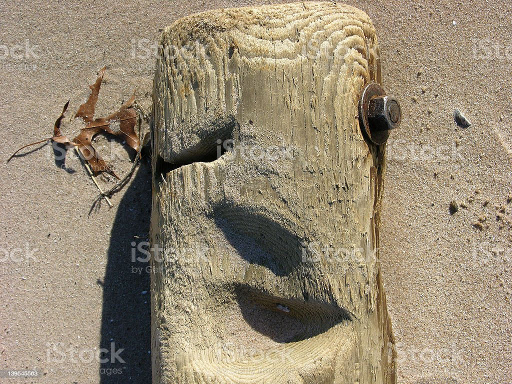 Face in the log royalty-free stock photo