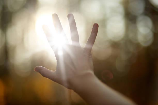 顔のない絵、太陽を覆う人間の手、手を通して照らす太陽、太陽を覆う人間の手の画像、太陽の明るい光線、公園や森の背景に隔離。自然のコンセプト。 - 明かり ストックフォトと画像