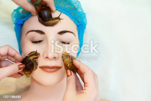 Lifting and facial massage of a young woman rejuvenates the skin in an unconventional way of the Achatina snail. Achatina snails massage the face and rejuvenate the skin. There is a copyspace for the text.