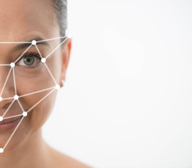 facial recognition - golden ratio стоковые фото и изображения