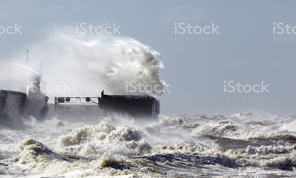 Facing the storm royalty-free stock photo