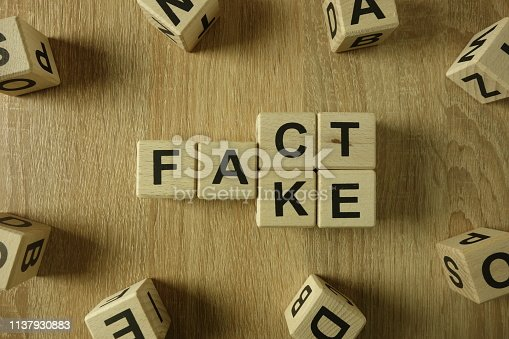 istock Fact or fake word from wooden blocks 1137930883