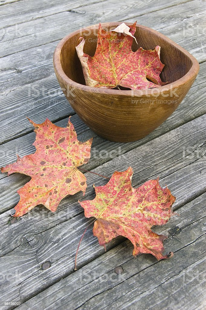Faded Red Maple leaves and wooden bowl on weathred table royalty-free stock photo