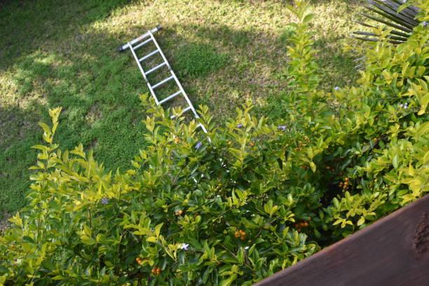 Conceito de fracasso... Depois de subir a escada caiu - foto de acervo