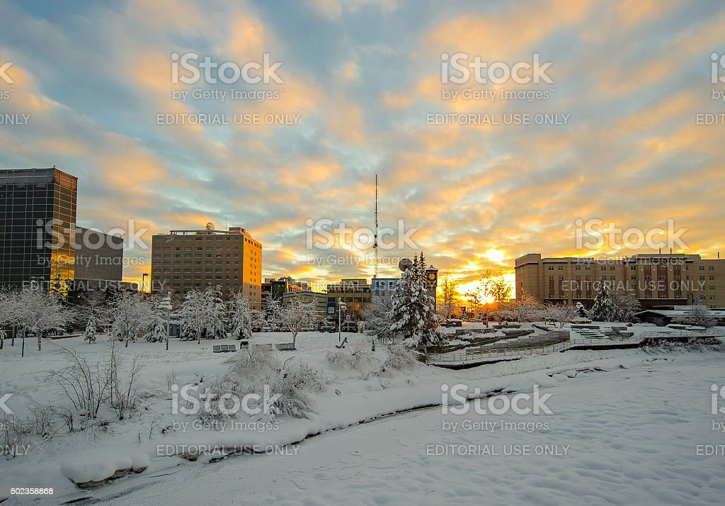 Fairbanks Skyline in Winter stock photo