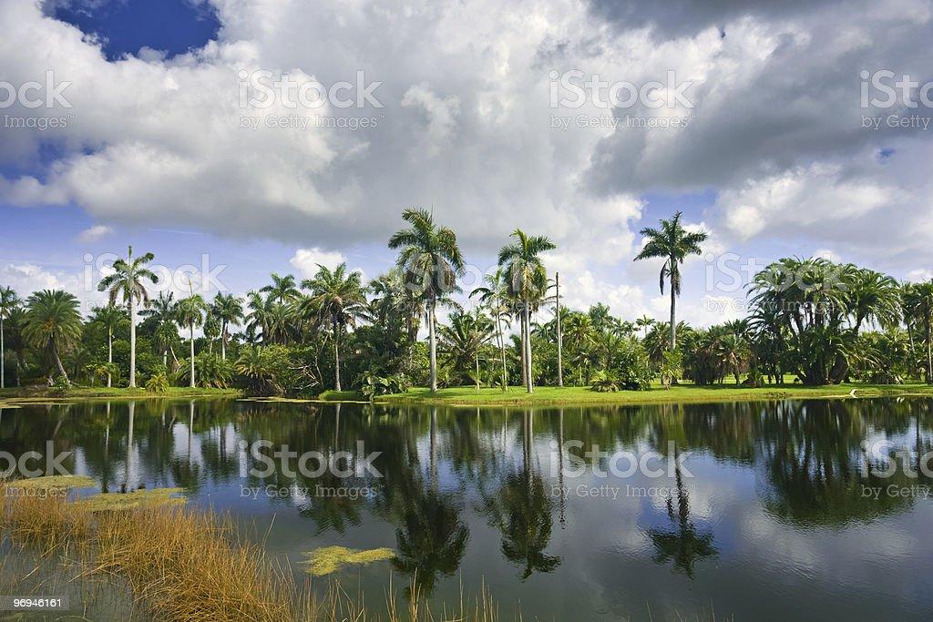 Fairchild tropical botanic garden royalty-free stock photo