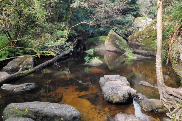 Fairies' pond in Huelgoat forest stock photo