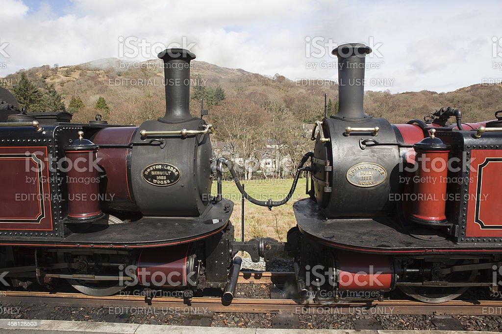 Fairlie 蒸気機関車のフェスティ...