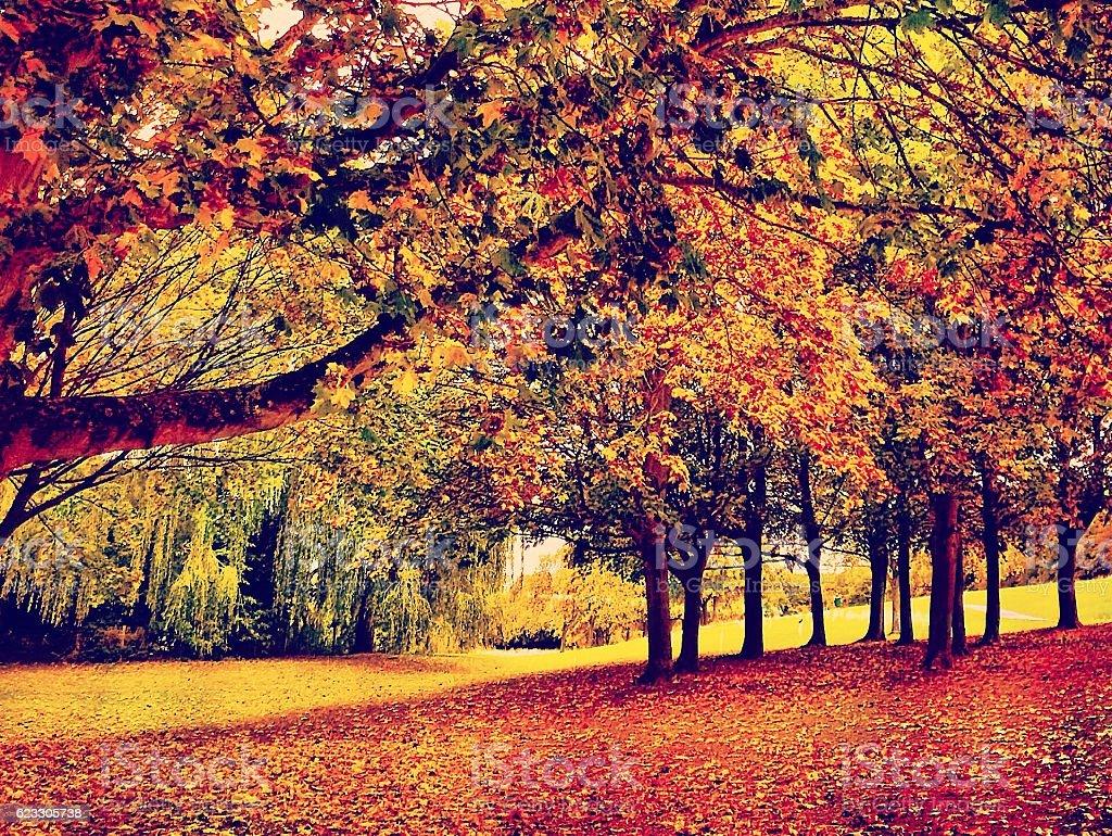 Fairly Autumny at Fairlands stock photo