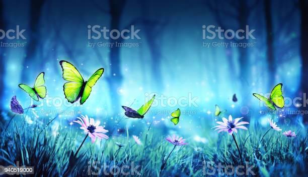 Fairy butterflies in mystic forest picture id940519000?b=1&k=6&m=940519000&s=612x612&h=zduherscvhjaet18eflc4ajnuye9usn1yjm34hdfk5y=