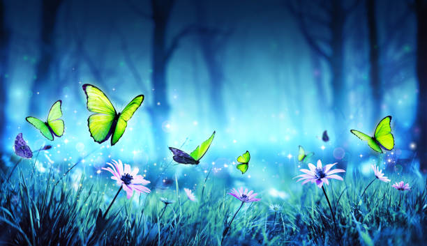 fairy butterflies in mystic forest - ethereal stock pictures, royalty-free photos & images