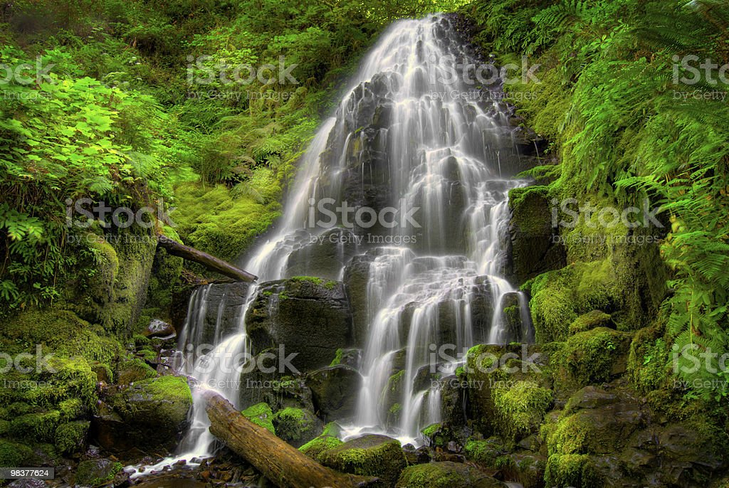 Fairy Falls, Oregon royalty-free stock photo
