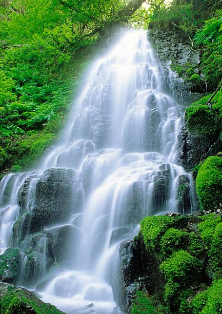 Fairy Falls stock photo