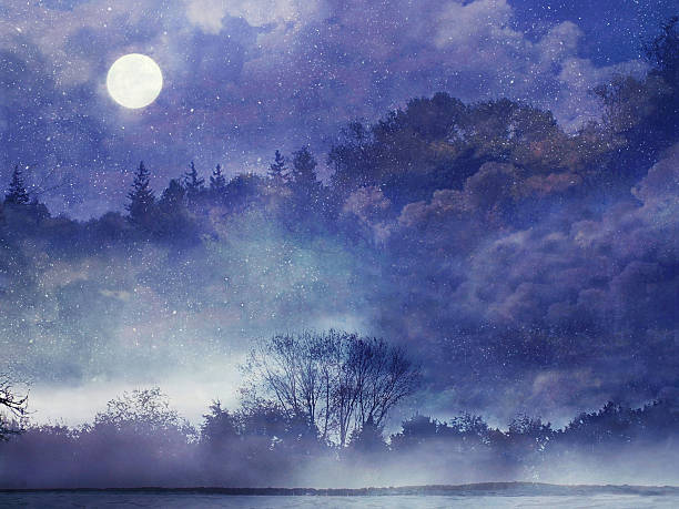 fairy forest - märchenillustrationen stock-fotos und bilder