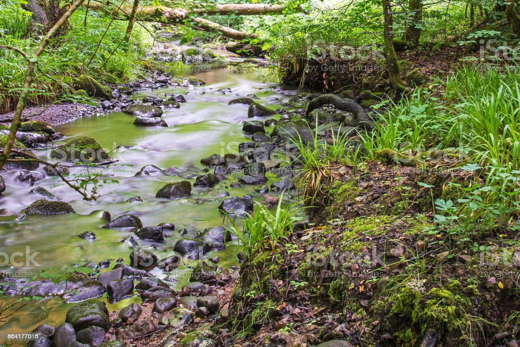 Fairy Glen Waterfalls underbrush foothpath royalty-free stock photo
