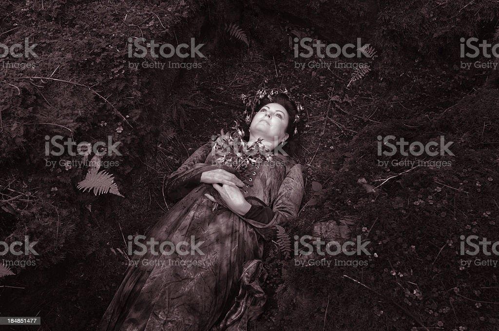 Fairy Grave stock photo