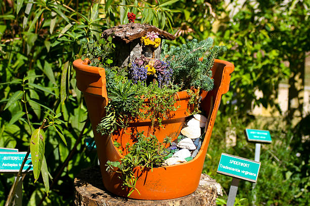 fairy house in planter - fee stock-fotos und bilder