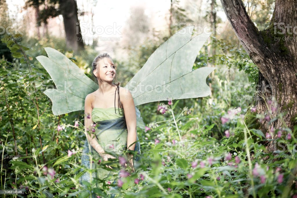 Fairy in the Woods stock photo