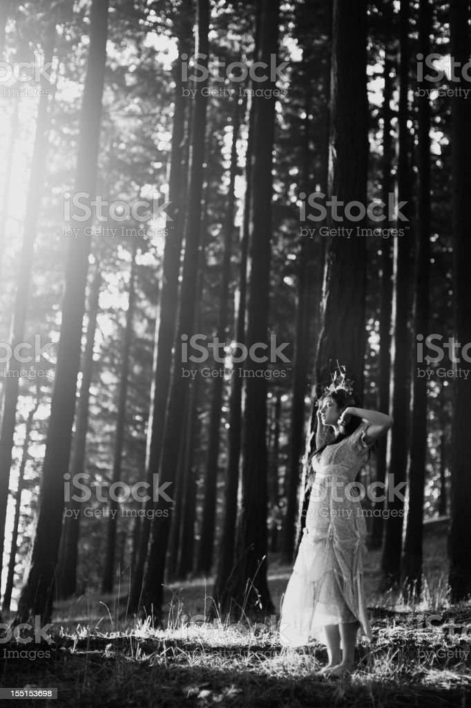 Fairy Princess in Bright Morning Woods royalty-free stock photo