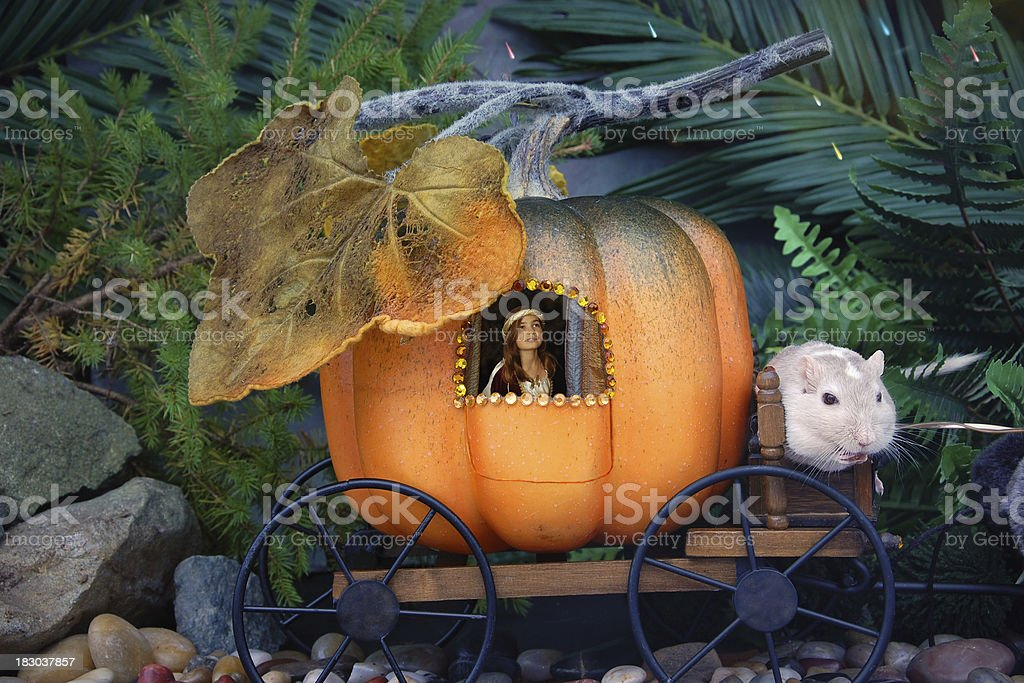 Fairy Princess in Pumpkin Carriage stock photo