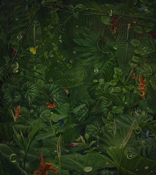 Fairy rainy jungle with hide wild animals picture id471895985?b=1&k=6&m=471895985&s=612x612&w=0&h=txxu71x1179ivakcmg9 i8w8cqtenksmzitq1xl aza=