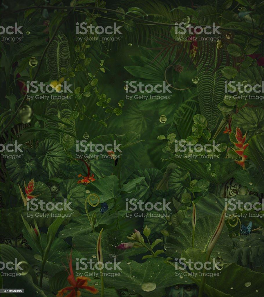 fairy rainy jungle with hide wild animals stock photo
