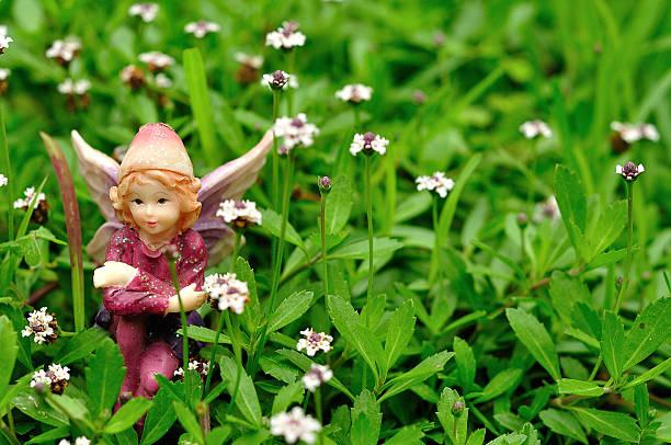 fairy sitting in a field of small white flowers - fee stock-fotos und bilder
